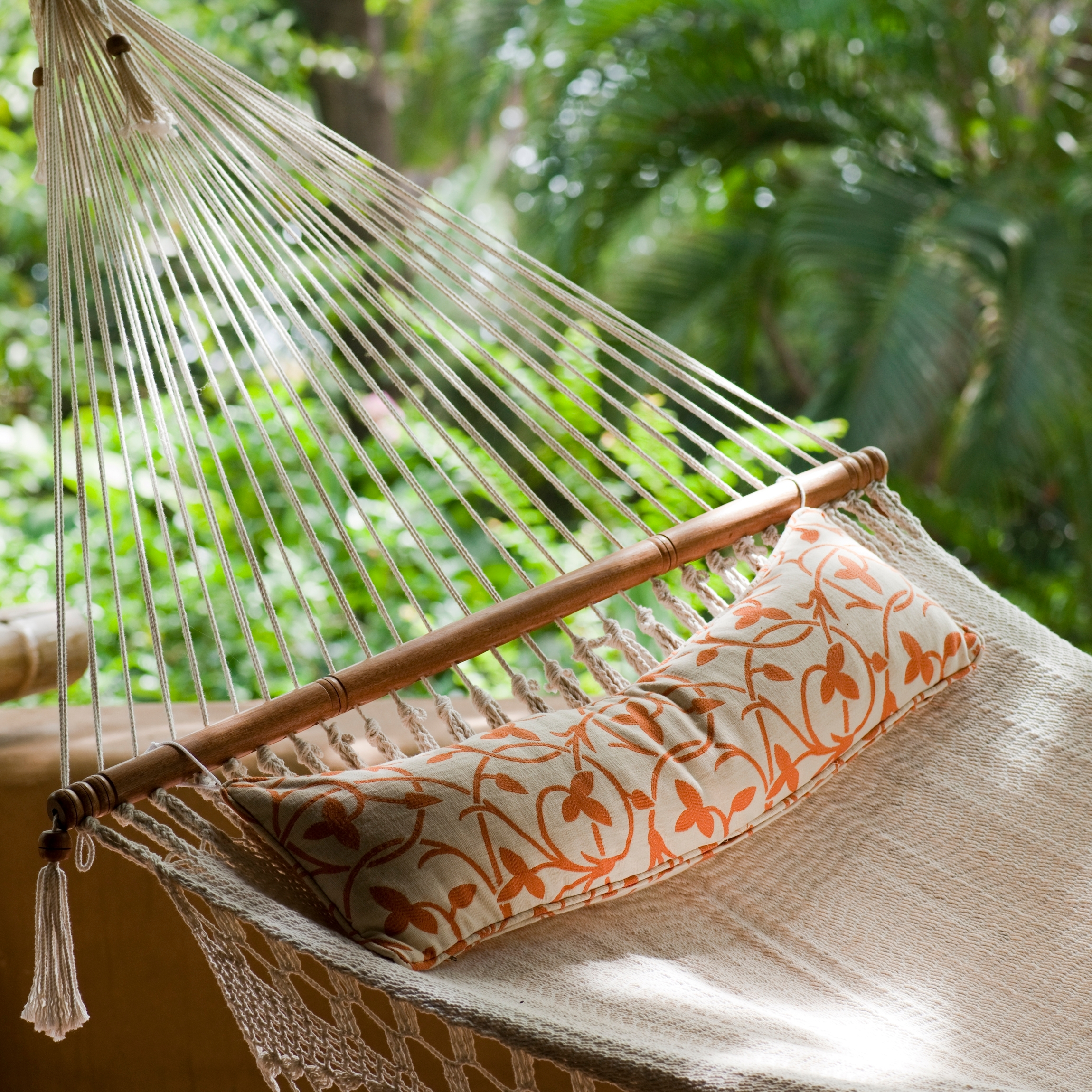 hammock with plants in background